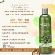 tea-tree-shampoo-1