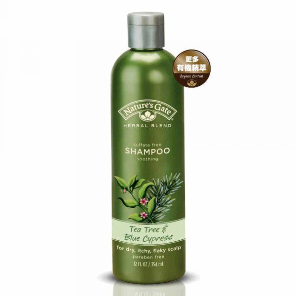 teatree-shampoo