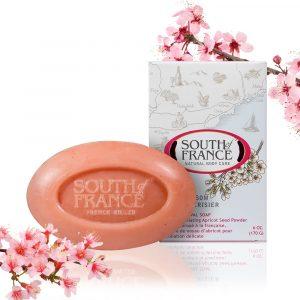 cherry-blossom-1000